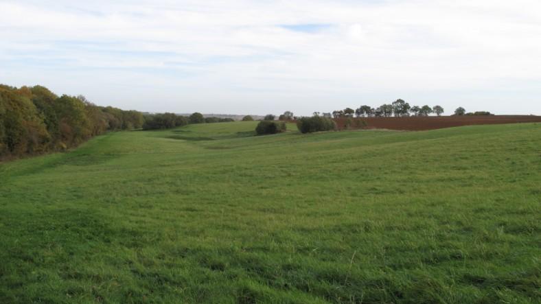 Gayton Wood Farm branch