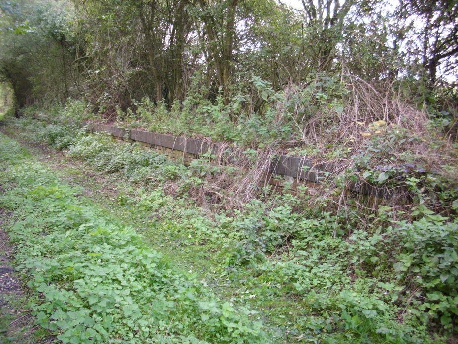 Salcey Forest platform
