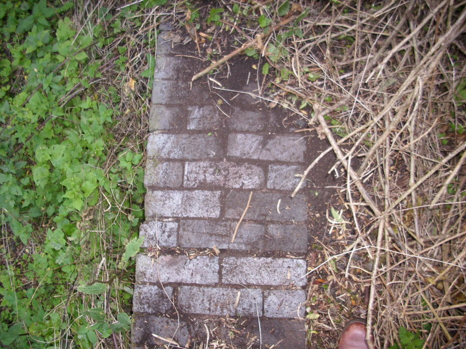 Platform edge at Salcey Forest