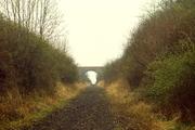 Bridge No 6