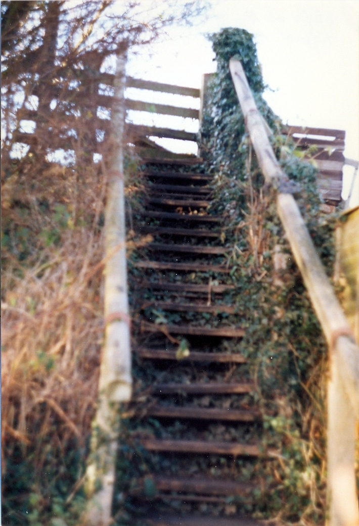 TIFFIELD STEPS0001