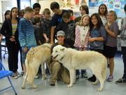Mountain View Elementary School presentation