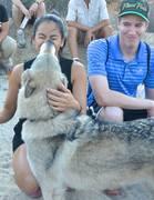 Wolfy Kiss