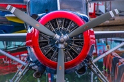 The Red Baron - © Larry Citra