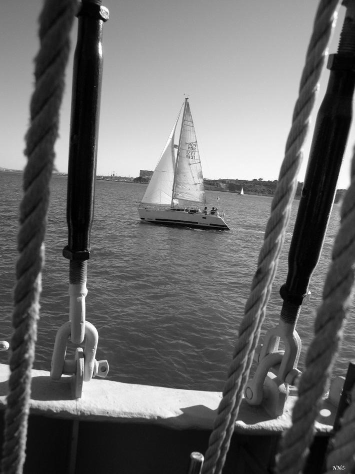 Navegar em liberdade
