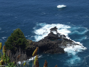 Madeira - Pormenor da Costa