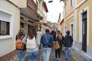 Explore Aveiro