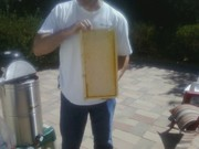 Our first honey extraction