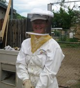 beekeeping first time
