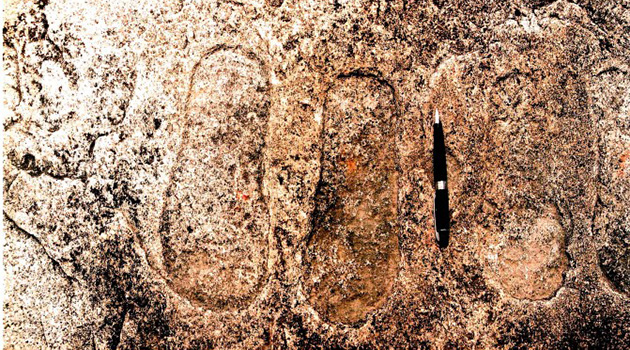 インドで発見された太古の足跡とUFO