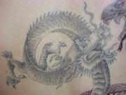 Amanda's Dragon Close-up