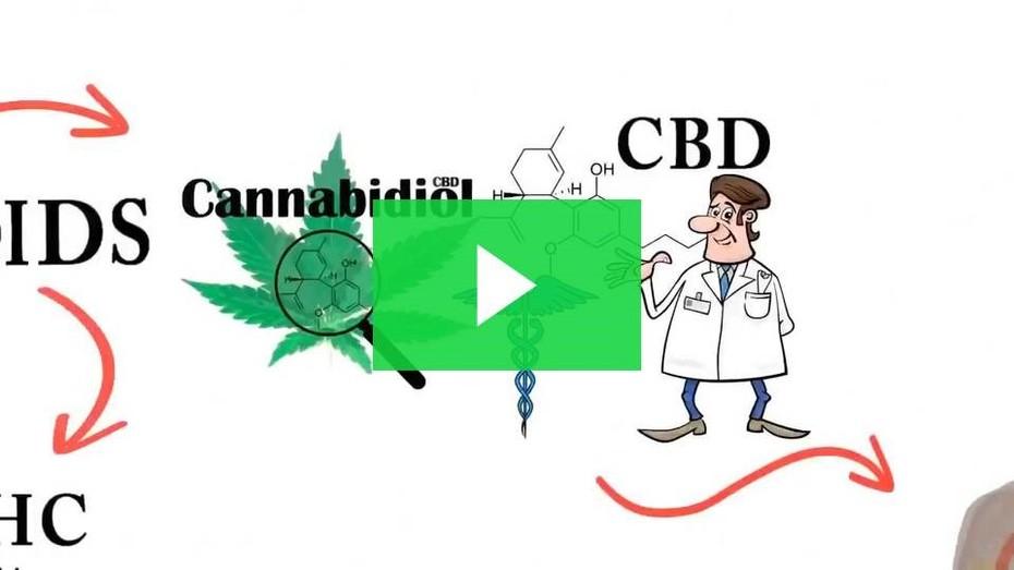 CBD-Explained-BUZZMEDIA257-BUZZEZEVIDEO-CTFO-CBD-NON-THC-Pic