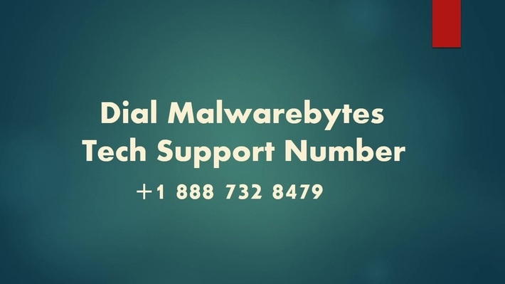 Dial Malwarebytes Tech Support Number