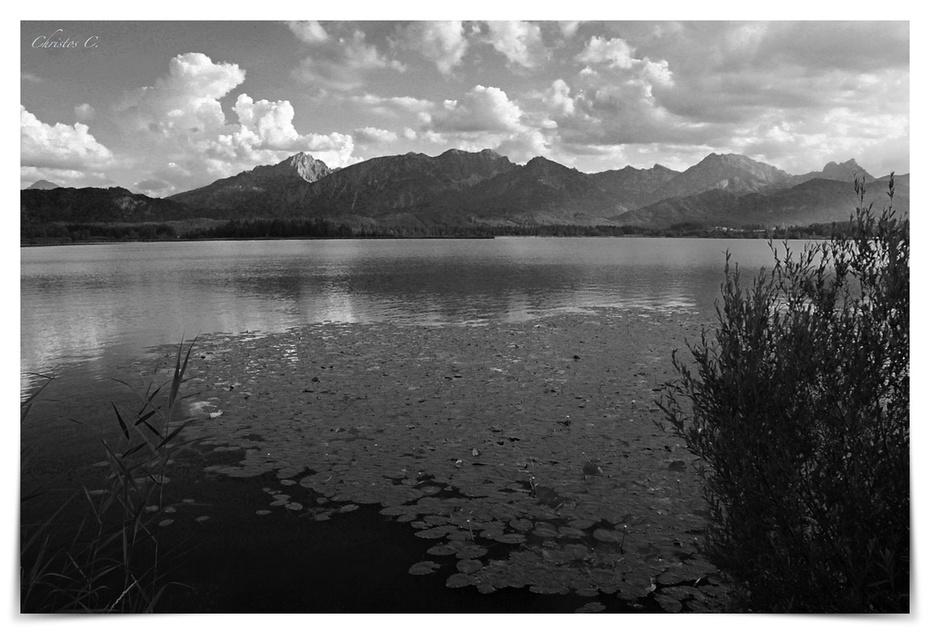 Lakescape in b/w