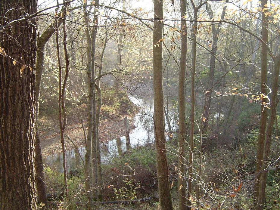 West Branch Rocky River