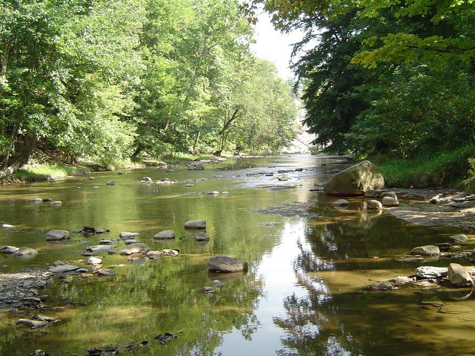 Rocky River Reflecitons
