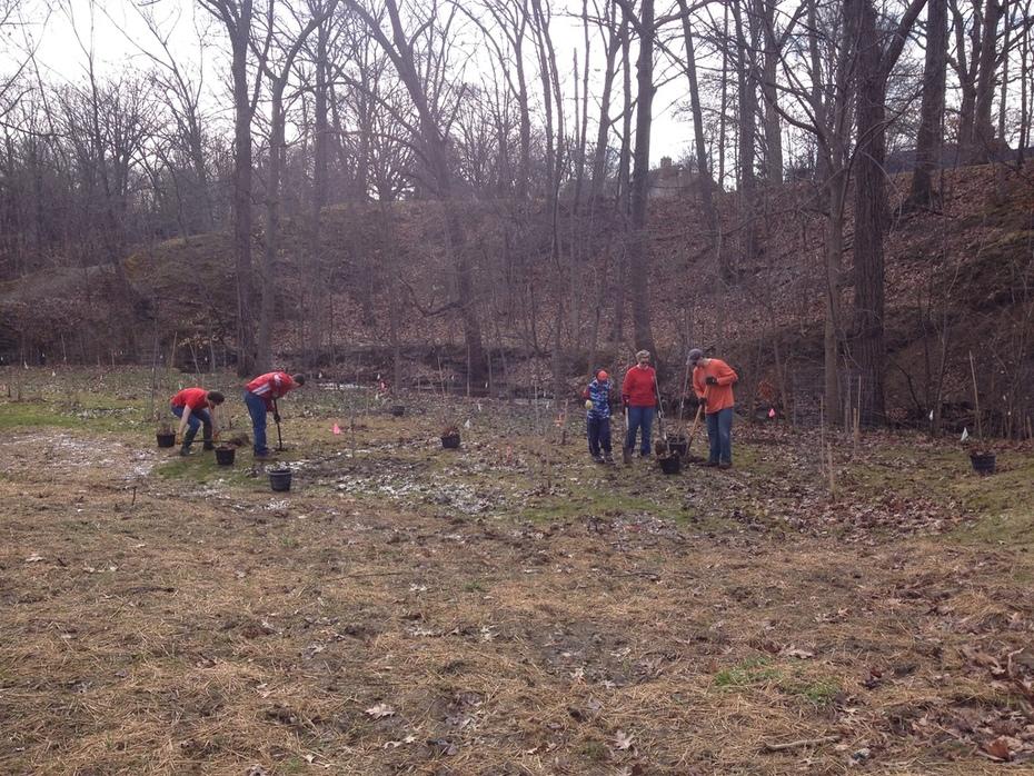 Coe Creek Tree Planting