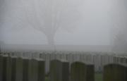 Cabaret Rouge Cemetery: mist over headstones