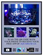 Aquarium I.D. Photo