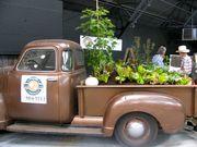 Pick-up truck's garden