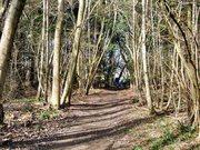 Mannings Heath Walk 15/3/12