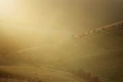 Caburn Sunrise Walk