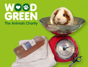 Rabbit and Guinea Pig Health MOT £5