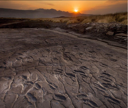 @natgeo #humanfootprints