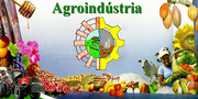 Agroíndustria e Agricult…