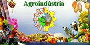 Agroíndustria e Agricultura Familiar