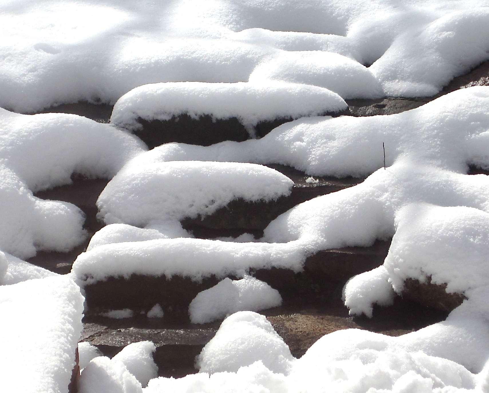 false spring is over, winter is back