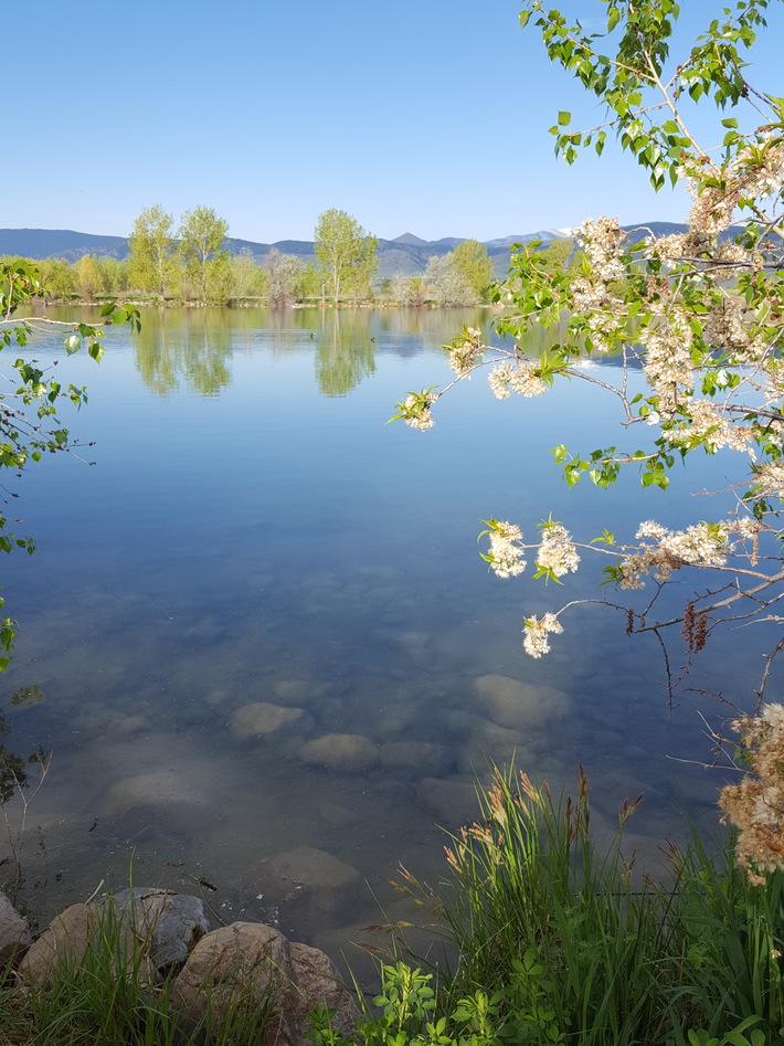 Coot Lake
