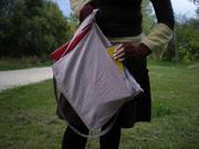Red and Navy Plaid Shoulder Bag