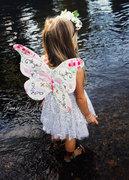 Spring Butterflies and Caterpillars
