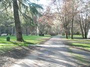 Indian Mary Park- Josephine County -  S.W. Oregon