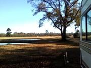 Nics stocked pond at Quiet Oaks RV Park