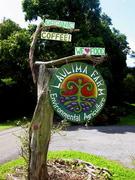 Laulima Organjc Farm