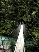 Routeburn Queenstown, New Zealand