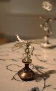 Flower Laden Path-Dragonfly