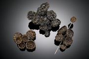 Cluster Brooch I, III, II