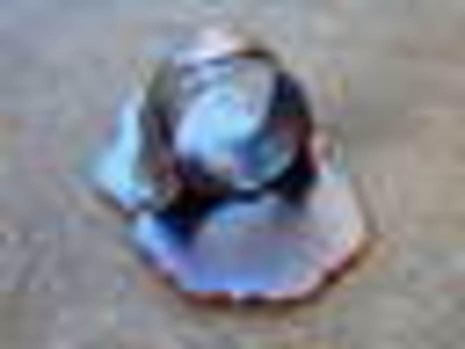 Rear Detail Dia De Los Muertos Ring