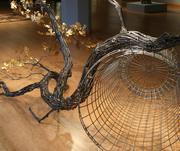 Field Study #15: Burr Oak, 2012, detail