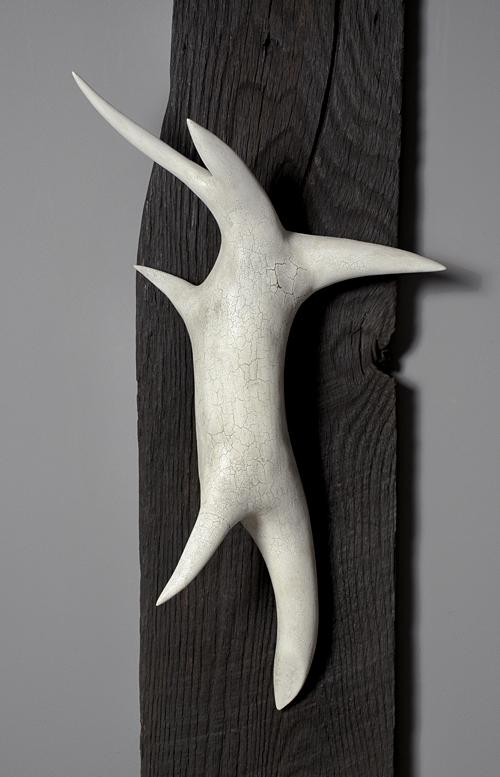 Primordium detail