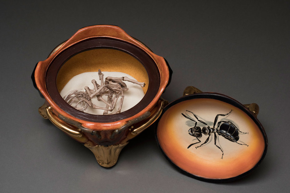 Carpenter Ant Coffin, detail