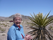 Lori pricked by a cactus