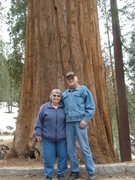 """Mom & Dad in front of a """"small tree"""""""