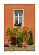 Red Flowers, Rothenburg, Germany