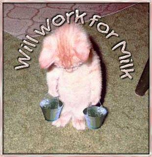 workformilk