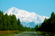 Denali from Trappers Creek