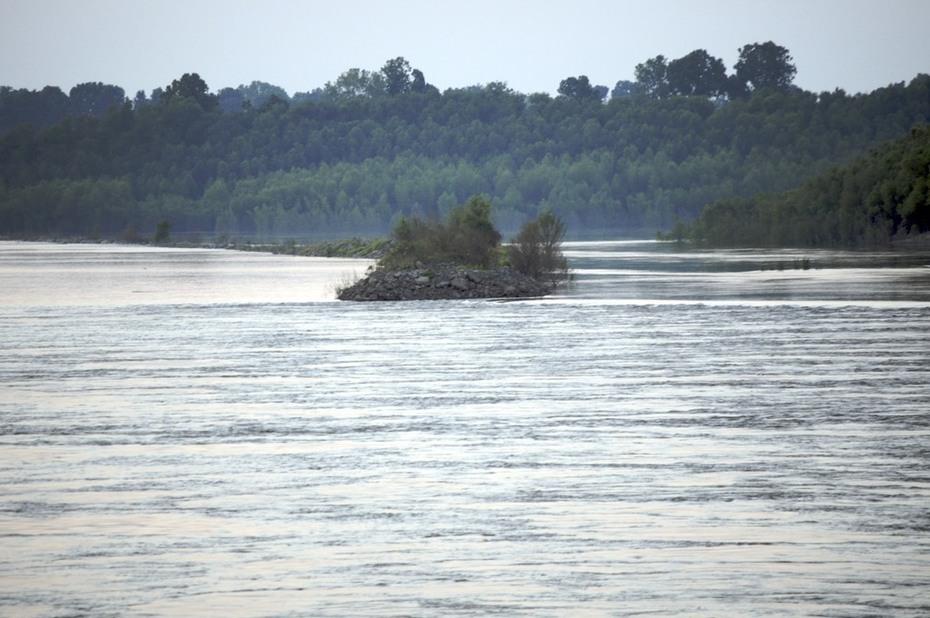 Riverboat 2008